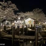 docks in winter